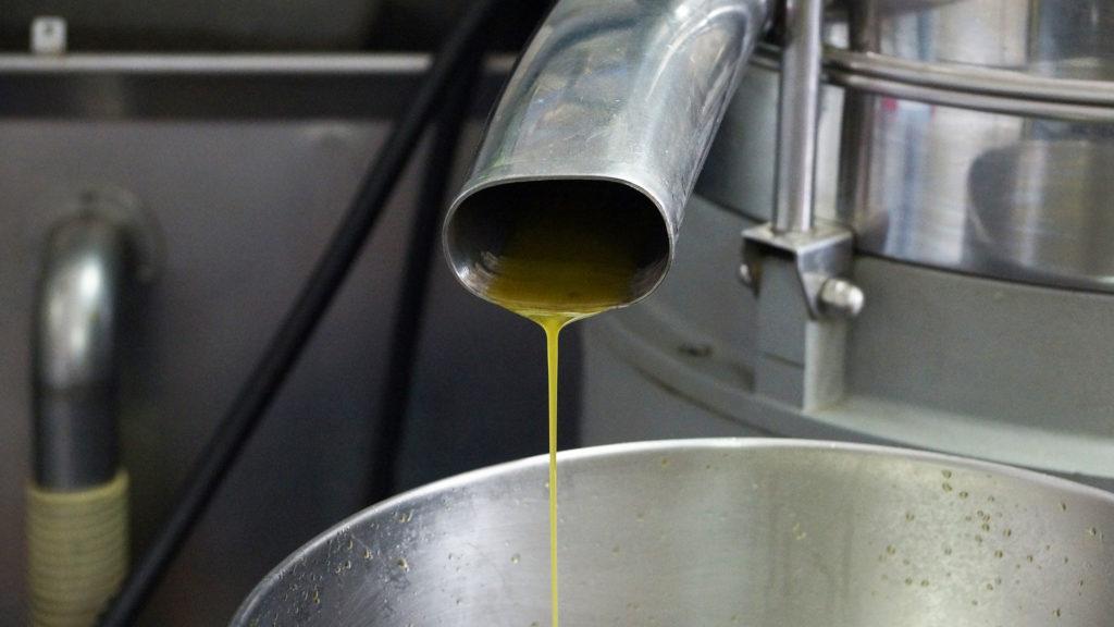 Die Gewinnung von Speiseöl